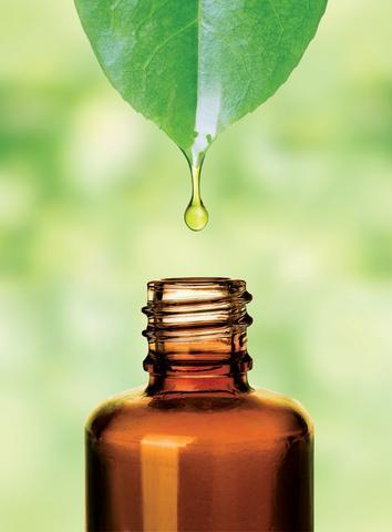 Seabuckthorn Secret Oil, wildheart wellbeing